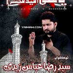 Raza Abbas Zaidi