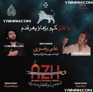 Ali Rizvi YAIMAM 2013
