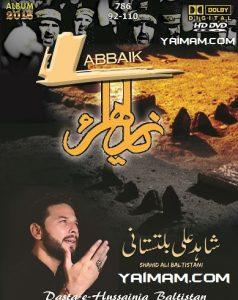 shahid-ali-baltistani-16-17