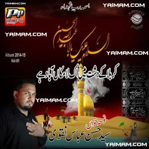 Syed Hasan Abbas Naqvi