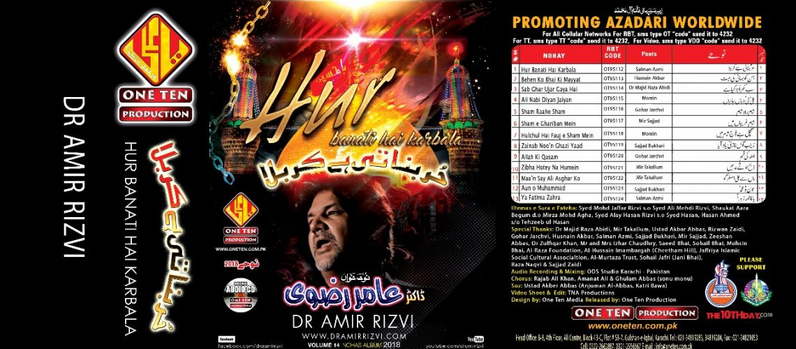 Dr Amir Rizvi 18