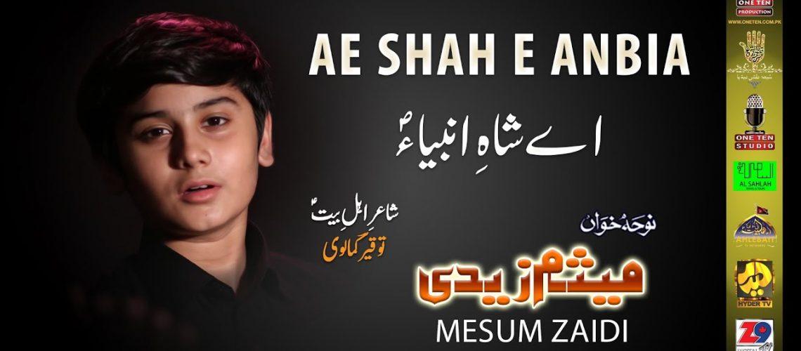 AE SHAH E ANBIA | MESUM ZAIDI 2020