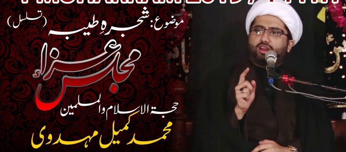 Maulana Kumail Mehdavi 2019 Majalis